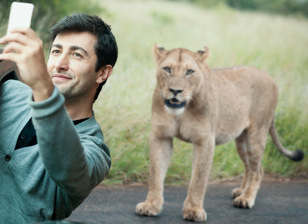 Guj forest dept urges tourists not to take 'selfie' with lions