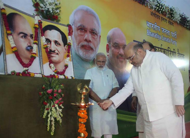 2017 is the crucial year for BJP: National Executive