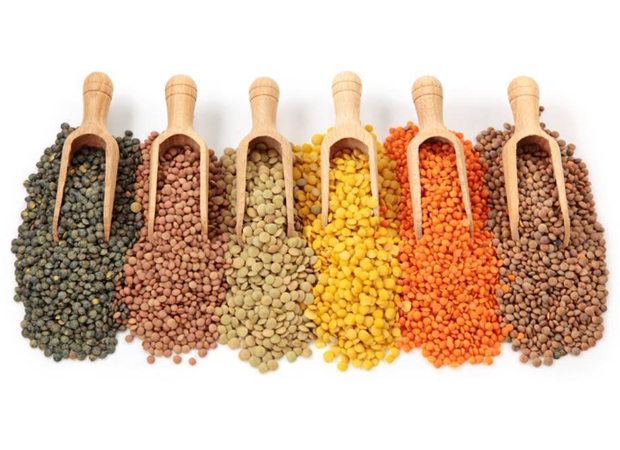 Centre to import pulses to check food inflation in the country