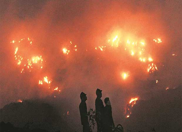 HC grants bail to 41 accused in Puttingal Devi temple fire case