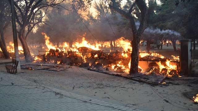 Mathura  madness:  a story  of mishandling from tee off