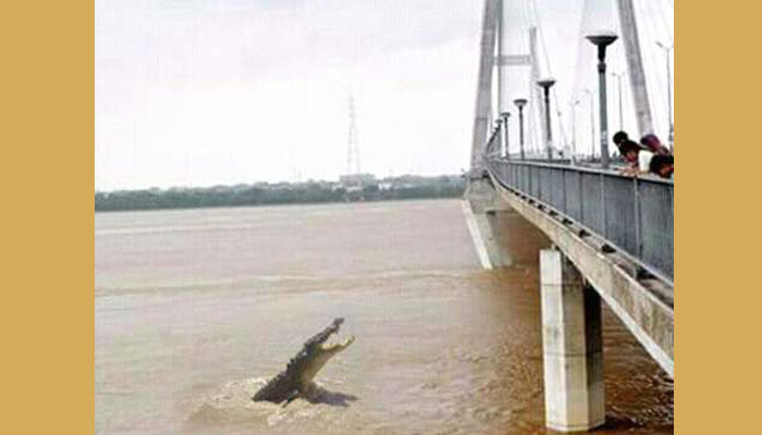 Flood situation worsens in Allahabad, Army put on alert