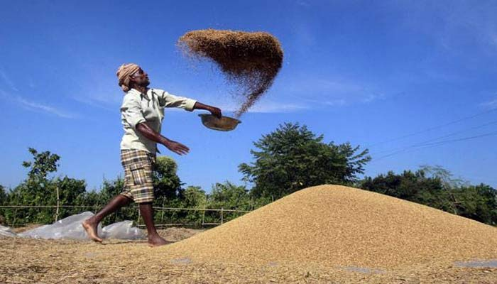 Farmers exempted from demonetisation to buy seeds