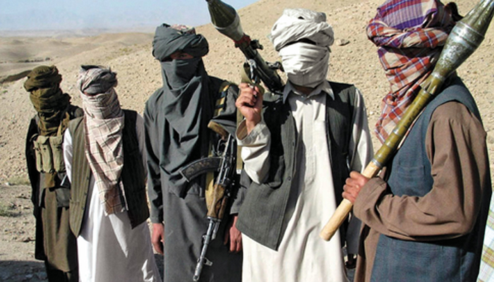Taliban couldnt re-emerge without Pakistan help: Afghan envoy