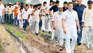 Rahul begins his Gujarat campaign with bullock-cart yatra