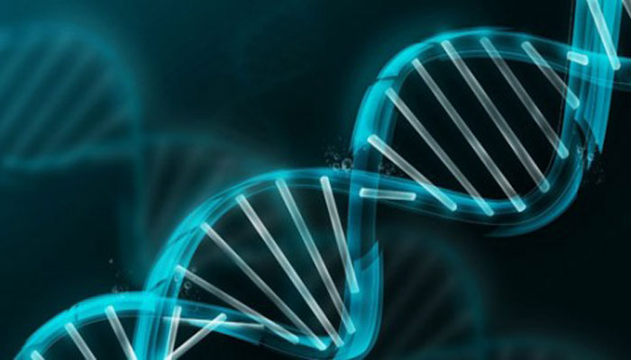 Space travel may cause long-term change to DNA, says NASA
