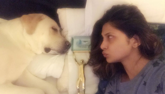 Top 10 Television stars and their pet love