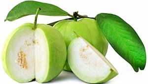 A Guava a day, keeps diseases at bay | Check how?