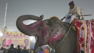 PICTURES: The Colors of Kumbh Mela 2019
