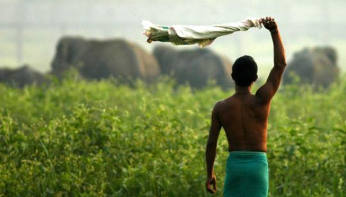 Centre releases PM-KISAN funds to 43.20 lakh Andhra farmers till Nov