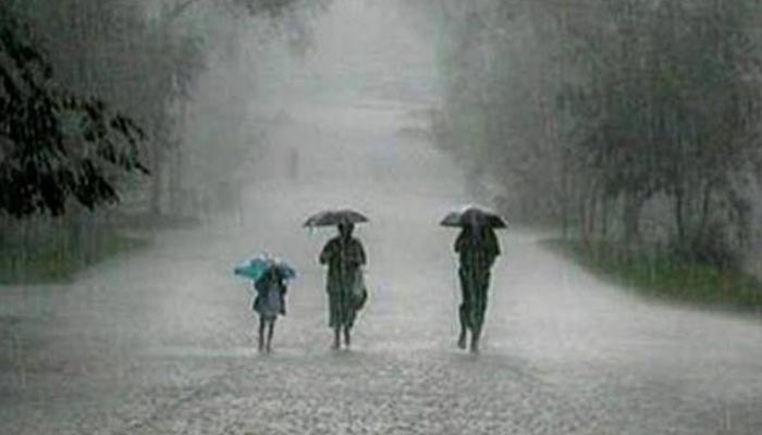 2,391 people died during monsoon in 2019