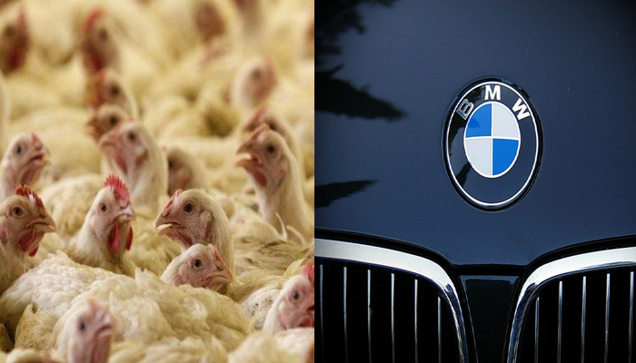 Luxury BMW owner steals chickens to buy fuel worth Rs 2 Cr.
