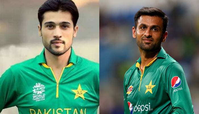 Please dont use bad words: Amir, Malik urge some restraint in criticism