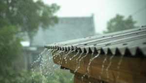Light to moderate rain in parts of Himachal Pradesh