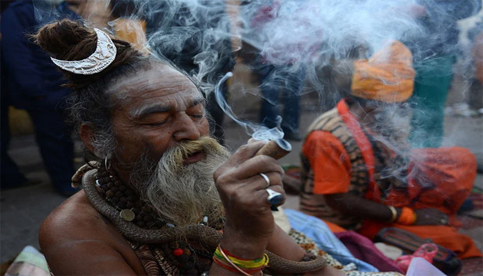 Indians love going high on weed: Delhi and Mumbai on the top of the list