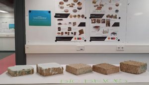 Researchers develop bio-bricks from agri waste products