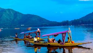 Jammu-Kashmir govt sets up panel to declare Dal Lake as ESZ