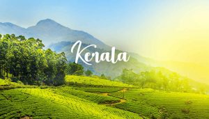 This is why Kerala bags award for 'Best Honeymoon Destination'