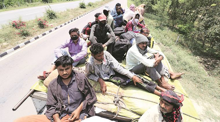 8 more COVID-19 deaths, 229 cases in UP