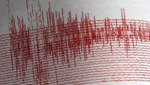 Strong earthquake shakes eastern Indonesia; no casualties