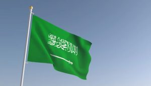 2 Saudi royals, others officials investigated for fraud