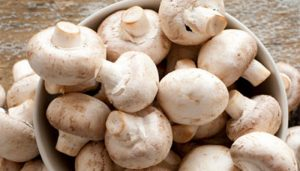 Add Mushrooms to your diet for health benefits