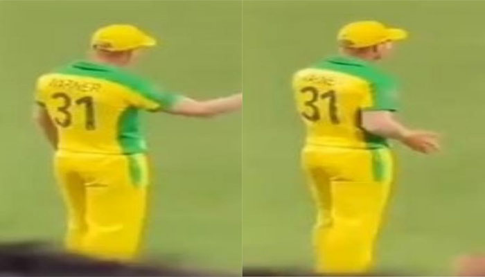 David Warner dances for Butta Bomma while fielding as audience cheers on him