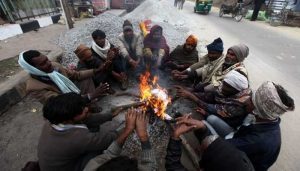 North India shivers under biting cold wave; Mercury drops to 1.8 degree Celsius