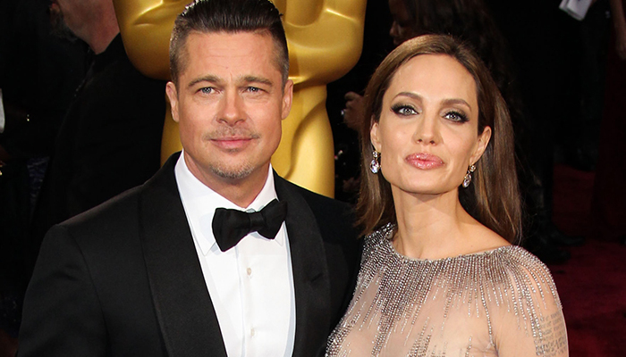 I have proof of Domestic Violence against Brad Pitt: Angelina Jolie