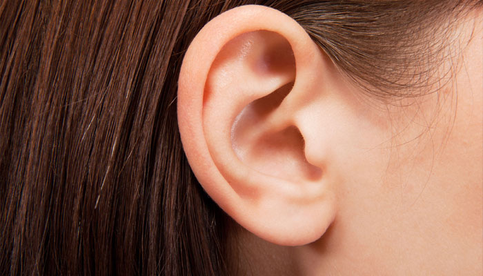 Ringing in ears cause brain to stay more at attention