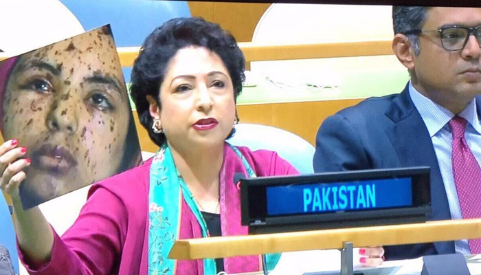 India exposes Pakistans use of fake photo at UN