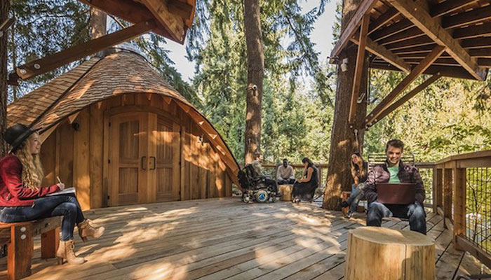 Microsoft builds treehouse offices at Redmond campus