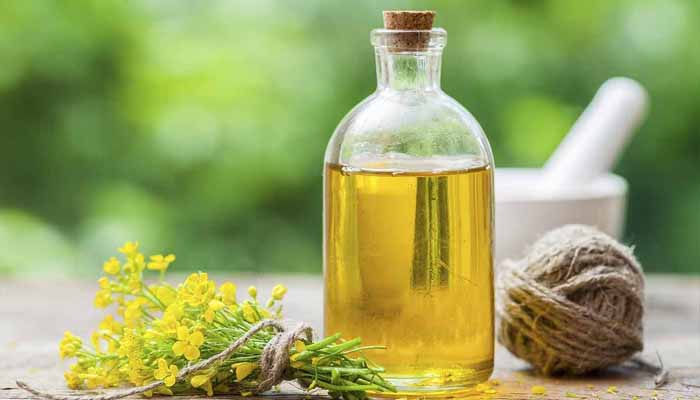 Try canola oil if you are diabetic, obese