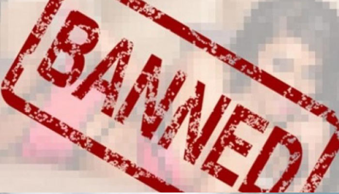 China closes over 4,000 porn, other harmful websites
