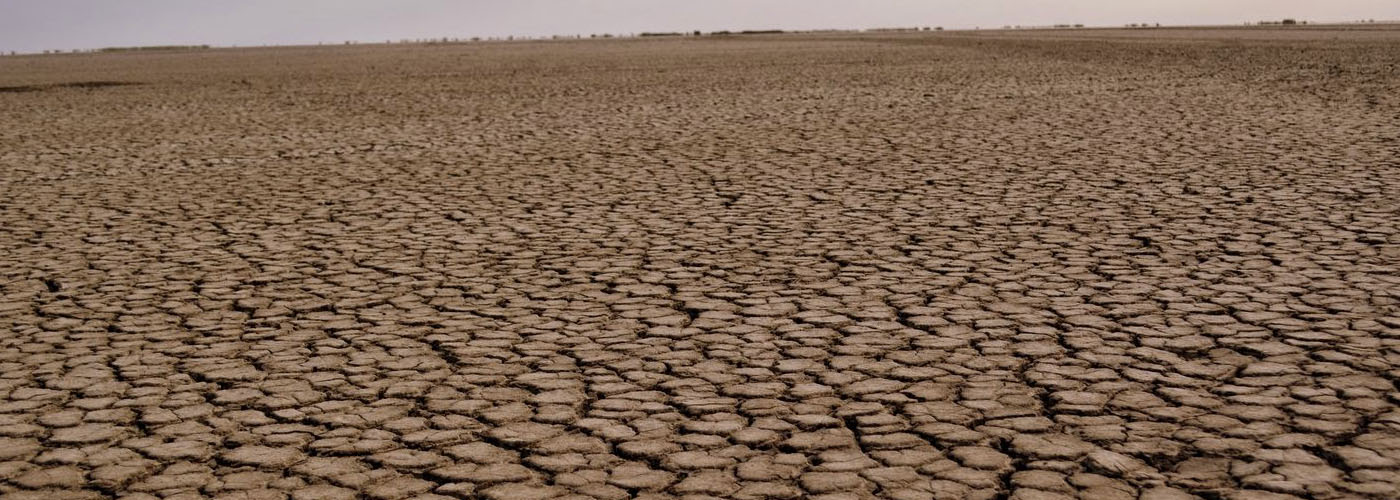 Karnataka: 23 districts declared drought-hit due to deficit rainfall